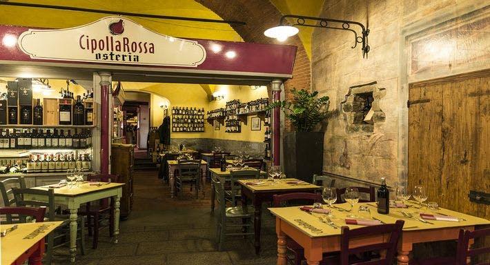 Cipolla Rossa Firenze image 13