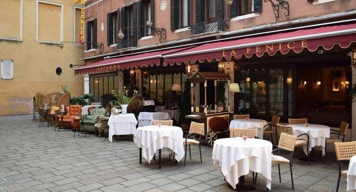 Taverna La Fenice Venice image 2