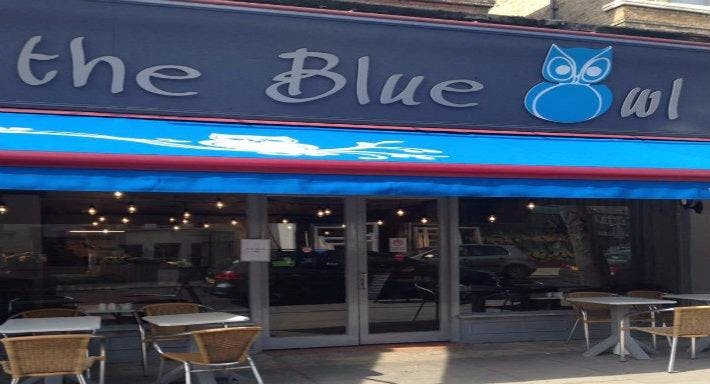 The Blue Owl London image 2