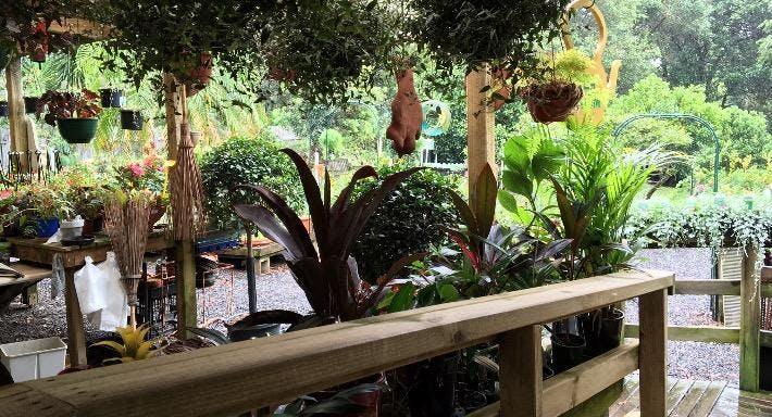 Little Tree Cafe