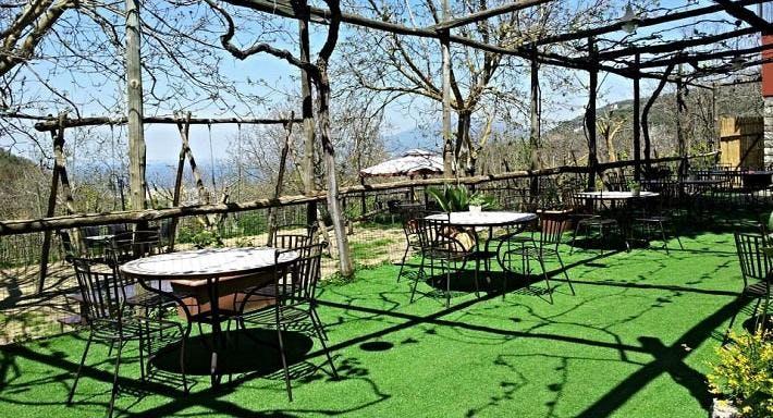 Villa Chiara orto & cucina Sorrento image 5