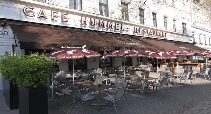 Hummel Vienne image 3