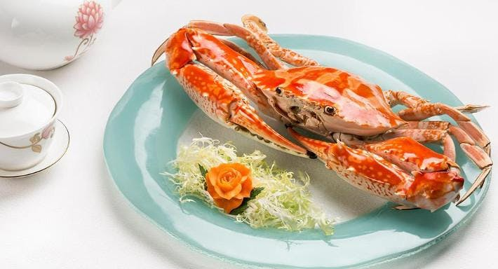 Pak Loh Chiu Chow Restaurant (Hysan Avenue, Causeway Bay) 百樂潮州酒樓 (銅鑼灣希慎道) Hong Kong image 3