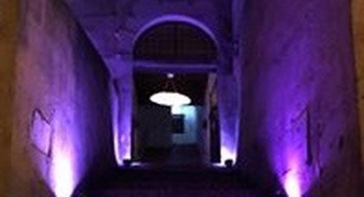 Salotto Palatino Roma image 2