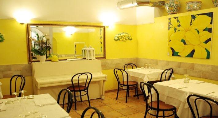 Limoncini Roma image 8