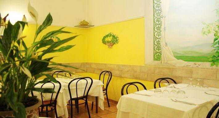 Limoncini Roma image 6