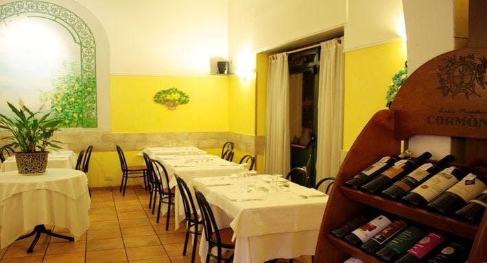 Limoncini Roma image 4