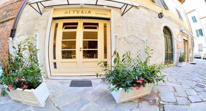 Osteria Da Cucciolino Pisa image 2