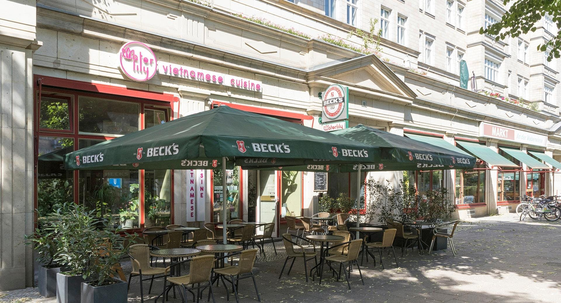Waterlily Berlin image 2