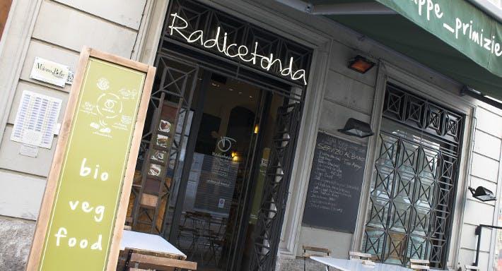 Radicetonda Via Spallanzani Milano image 3
