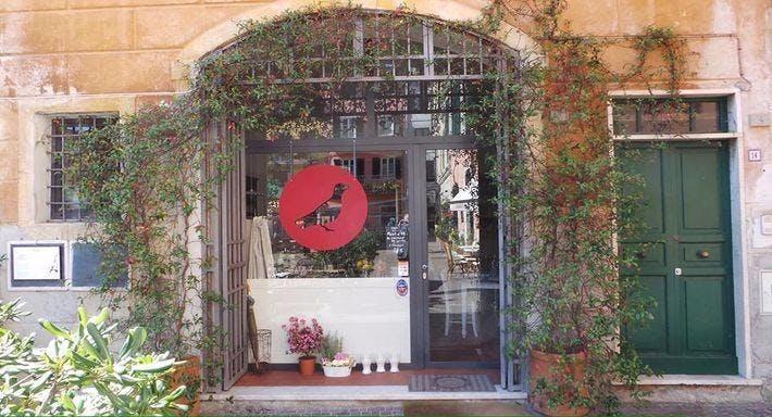Il Calandrino La Spezia image 7