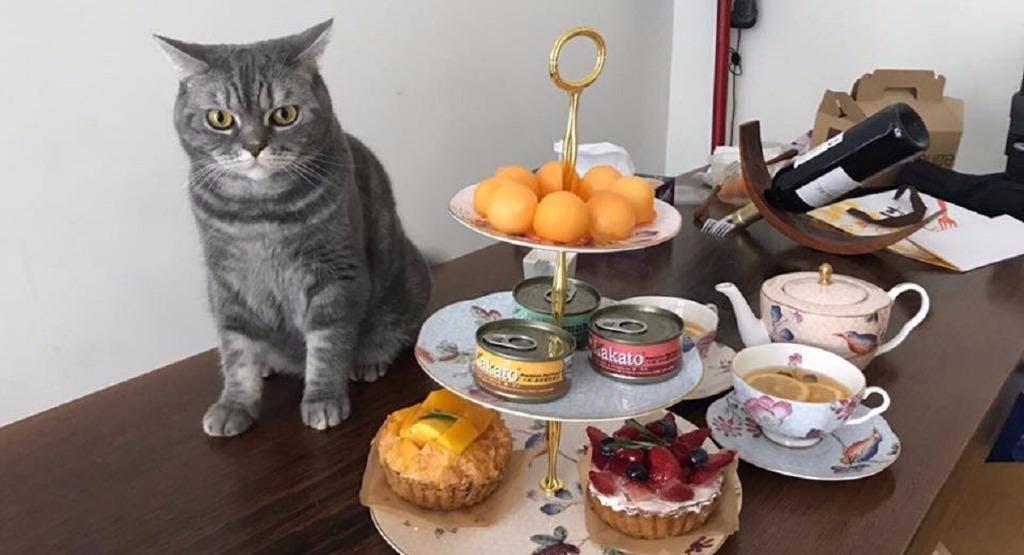 Mr & Mrs Cat Cafe Hong Kong image 1