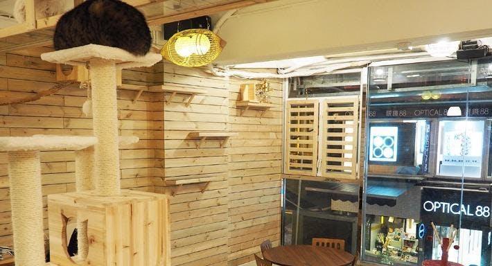 Mr & Mrs Cat Cafe Hong Kong image 3