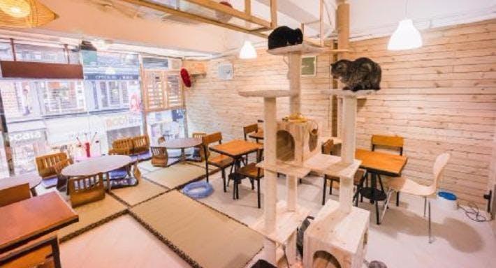 Mr & Mrs Cat Cafe'