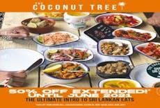 The Coconut Tree - Cardiff