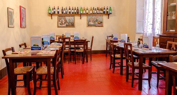 L'Isola che non c'era Lucca image 3